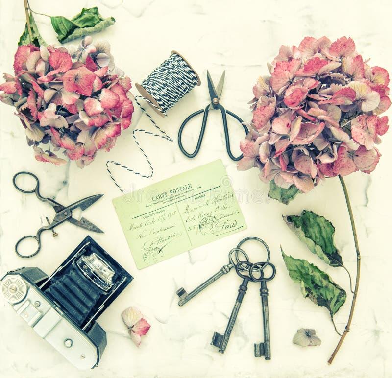 Hortensia flowers vintage scissors photo camera flat lay toned stock photos