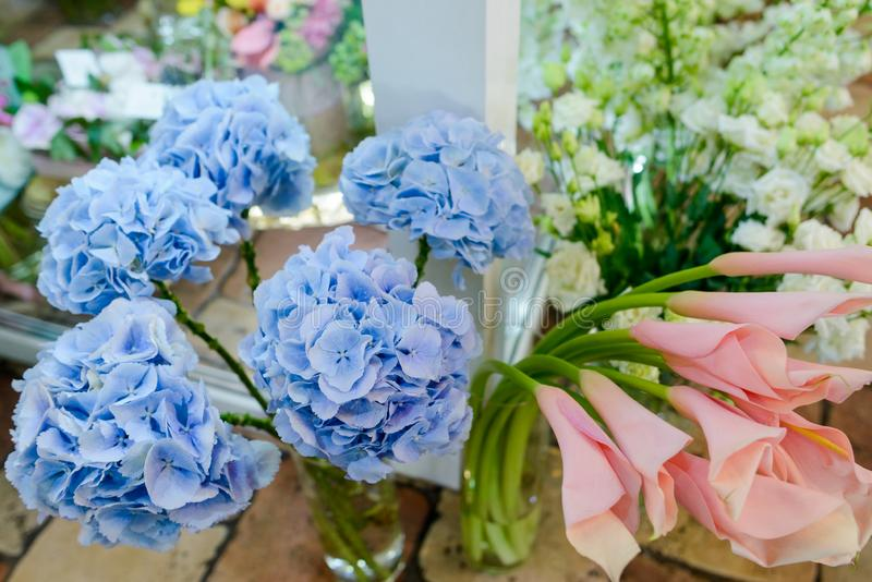 Hortensias y cala azules claras del melocotón fotos de archivo libres de regalías