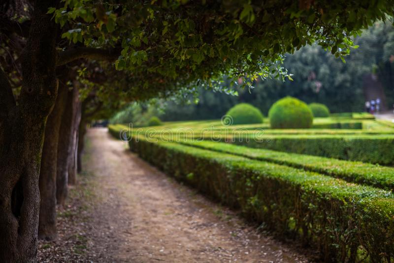 Horti Leonini,圣奎里科多尔恰,托斯卡纳,意大利 免版税库存照片