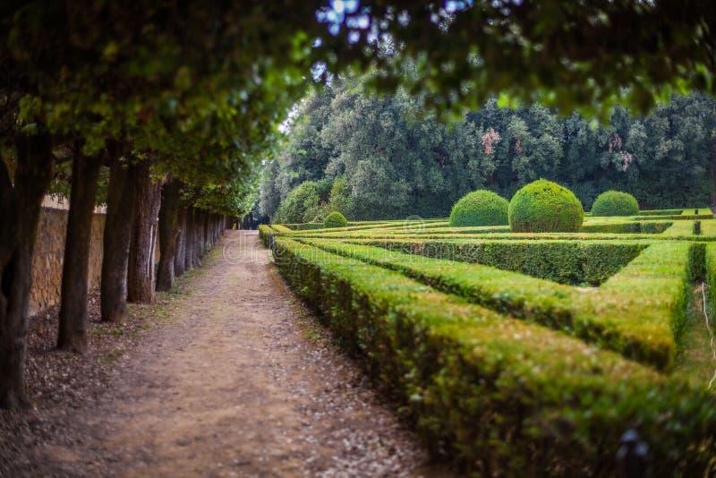 Horti Leonini,圣奎里科多尔恰,托斯卡纳,意大利 库存照片