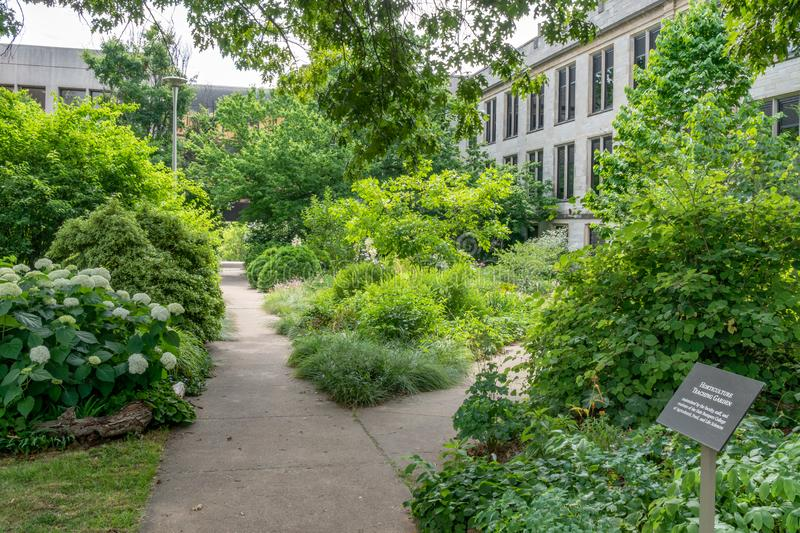 Horticulture Teaching Garden at University of Arkansas. FAYETTEVILLE, AR/USA - JUNE 8, 2018: Horticulture Teaching Garden on the campus of the University of stock photography