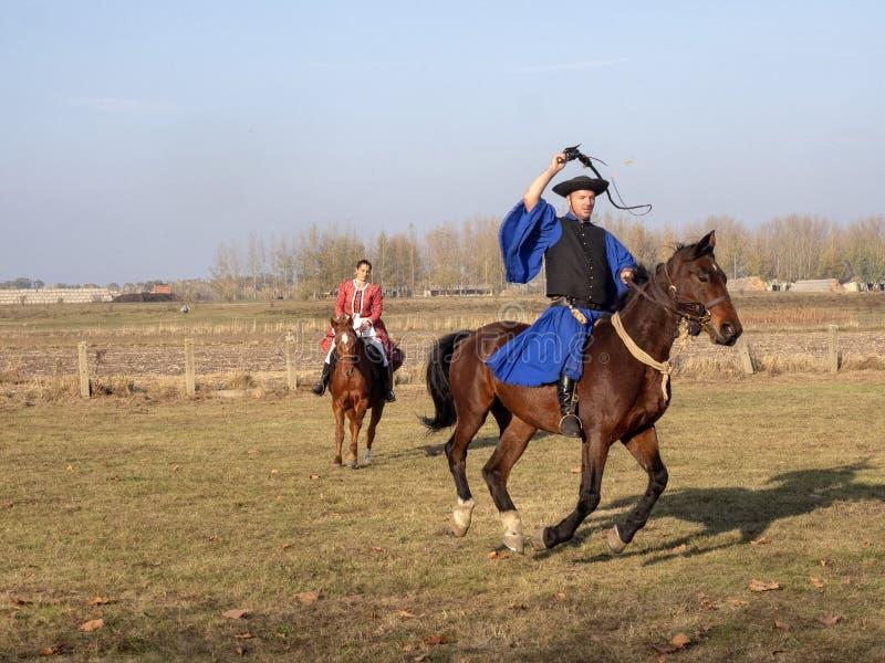 HORTOGAGY,匈牙利,11月,04日 2018年马骑术学校的示范,11月04日 2018年,Hortobagy,匈牙利 库存照片