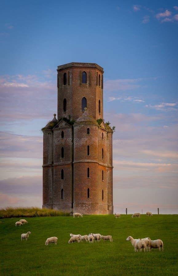 Horton Góruje przy zmierzchem, głupota w Wschodnim Dorset obraz royalty free
