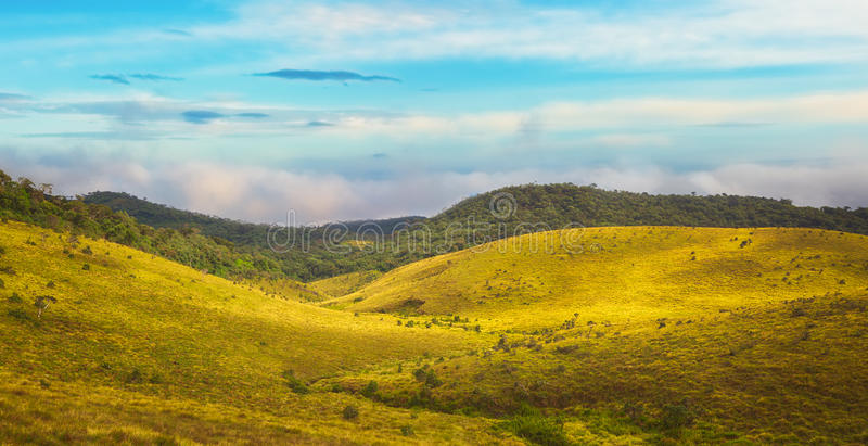 The Horton Plains. Beautiful view of The Horton Plains royalty free stock images