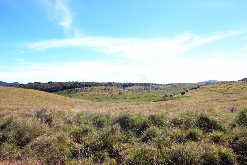 Horton równiien park narodowy obrazy royalty free