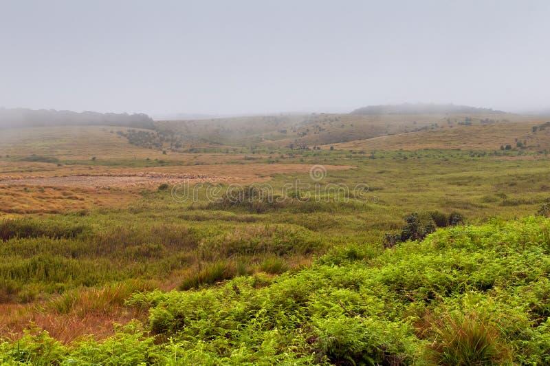 Horton równiien park narodowy Sri Lanka zdjęcia stock