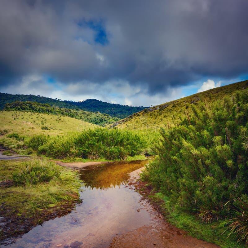Horton równiny Piękny krajobraz Sri Lanka zdjęcia stock