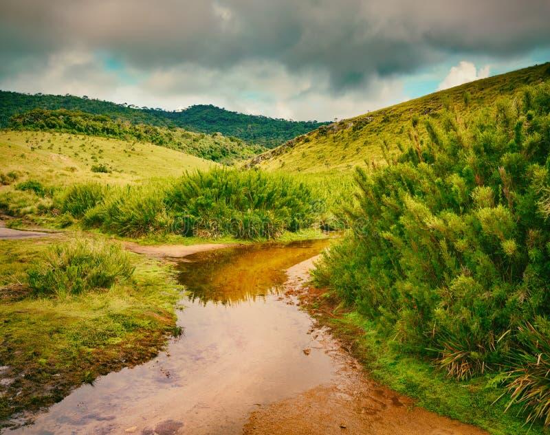 Horton równiny Piękny krajobraz Sri Lanka zdjęcie stock