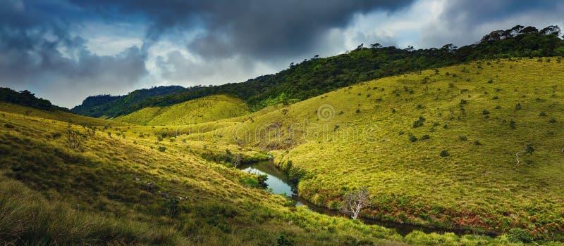 Horton równiny Piękny krajobraz Sri lanki panorama fotografia royalty free