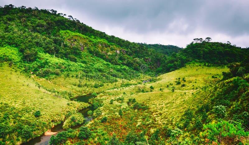 Horton równiny Piękny krajobraz Sri lanki panorama zdjęcie royalty free