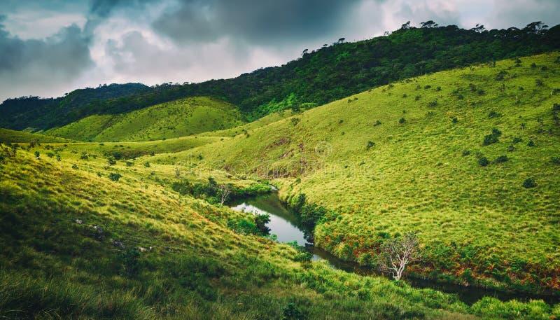 Horton równiny Piękny krajobraz Sri lanki panorama obrazy royalty free