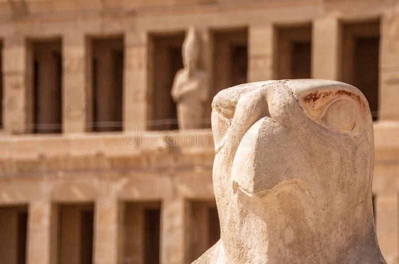 Horus que guarda el templo de Hatshepsut en Egipto, valle de los reyes, Luxor, Egipto imagenes de archivo