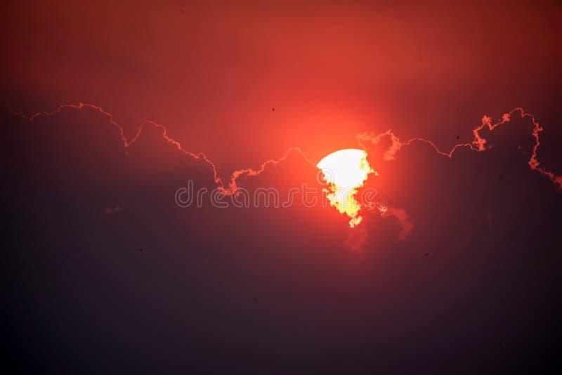 Horyzont linia z słońca położeniem obrazy royalty free