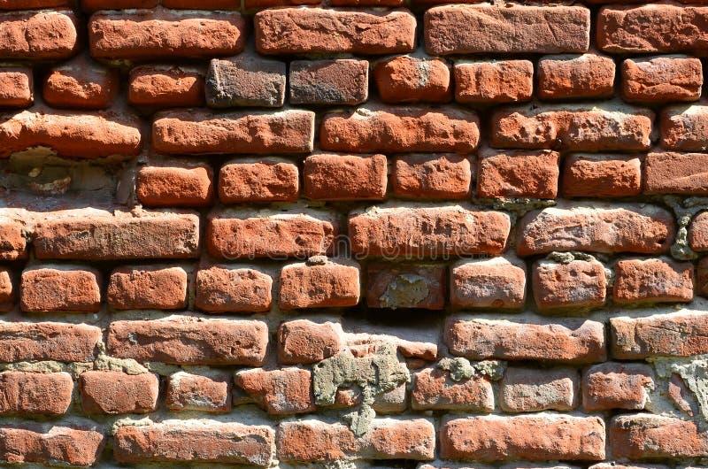 Horyzontalna ścienna tekstura kilka rzędy bardzo stary brickwork robić czerwona cegła Rozbijający i uszkadzający ściana z cegieł  fotografia royalty free