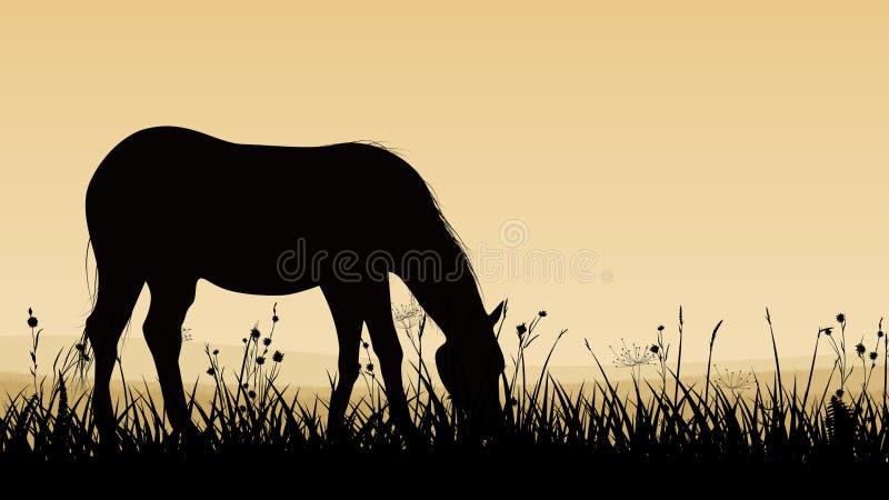 Horyzontalna ilustracja koński pasanie. royalty ilustracja