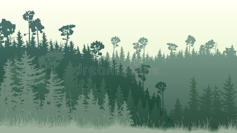 Horyzontalna ilustracja las z trawą przy półmrokiem ilustracja wektor
