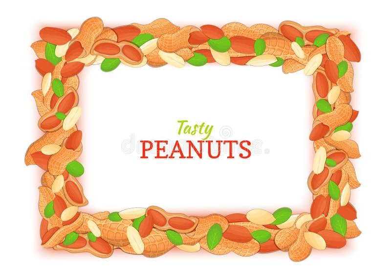 Horyzontalna prostokąt rama komponująca wyśmienicie arachid Wektor karciana ilustracja Arachid dokrętki ramy, orzech włoski owoc  royalty ilustracja