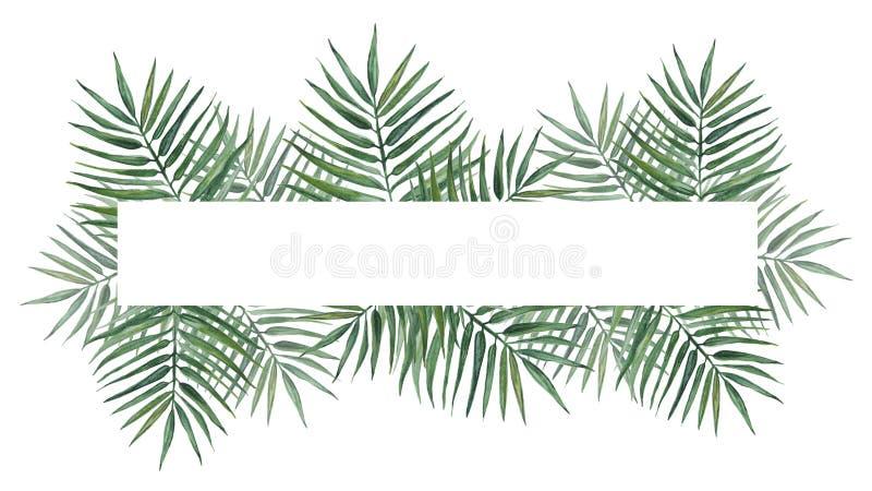 Horyzontalna rama z palma liśćmi beak dekoracyjnego lataj?cego ilustracyjnego wizerunek sw?j papierowa kawa?ka dym?wki akwarela royalty ilustracja