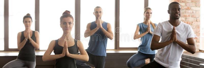 Horyzontalni wizerunków ludzie podczas joga sesyjnej pozycji w Drzewnej pozie zdjęcia royalty free