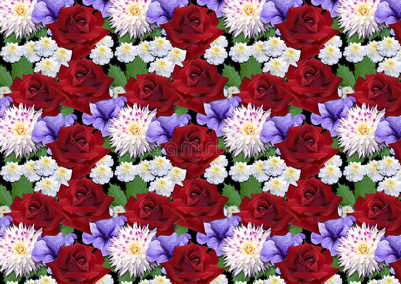 Horyzontalny bezszwowy tło z róż dalii asterami ilustracja wektor