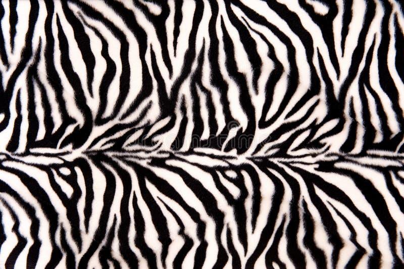 Zebra wzór zdjęcie stock