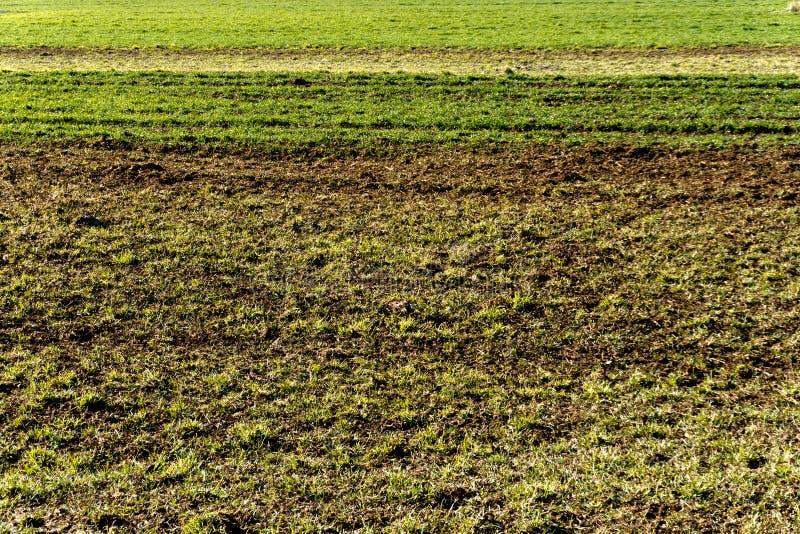 Horyzontalny tło trawy i brudu pola w różnych kolorach obrazy stock