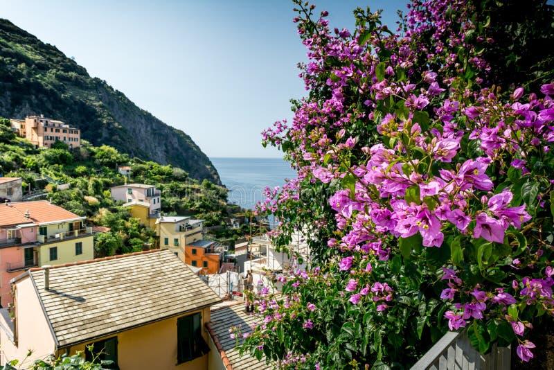 Horyzontalny widok miasteczko Riomaggiore zdjęcie royalty free