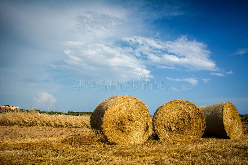 Horyzontalny widok siano bele na Stronniczo Chmurnym niebieskim niebie Backgr zdjęcia stock