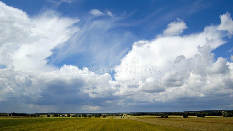 horyzontu drzewo krajobrazowy wiejski mały zdjęcia royalty free