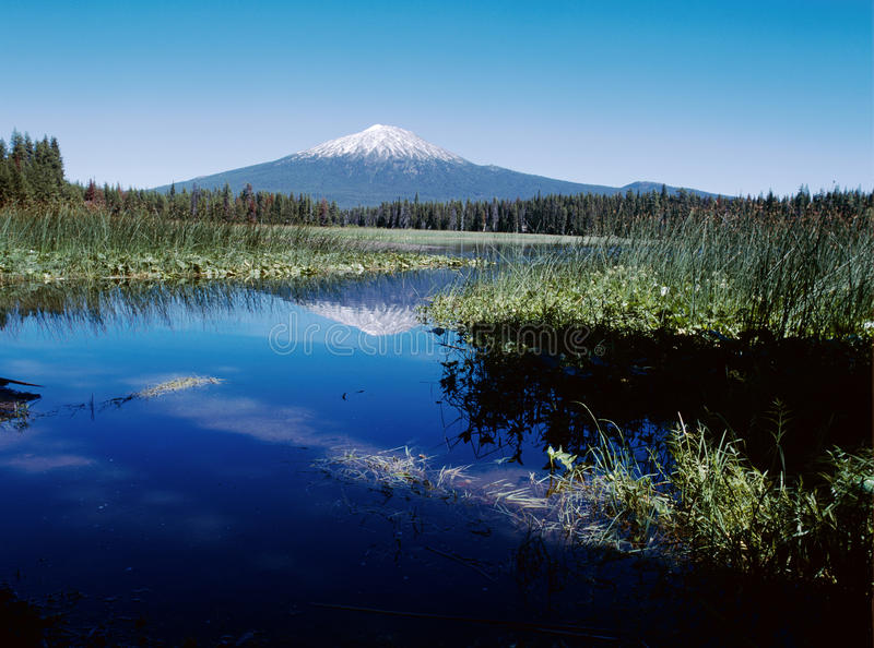 Hosmer Lake in Oregon Cascades with Mount Bachelor royalty free stock photography