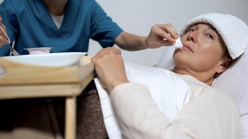 Hospice worker helping to eat mentally disabled elderly woman, healthcare royalty free stock image