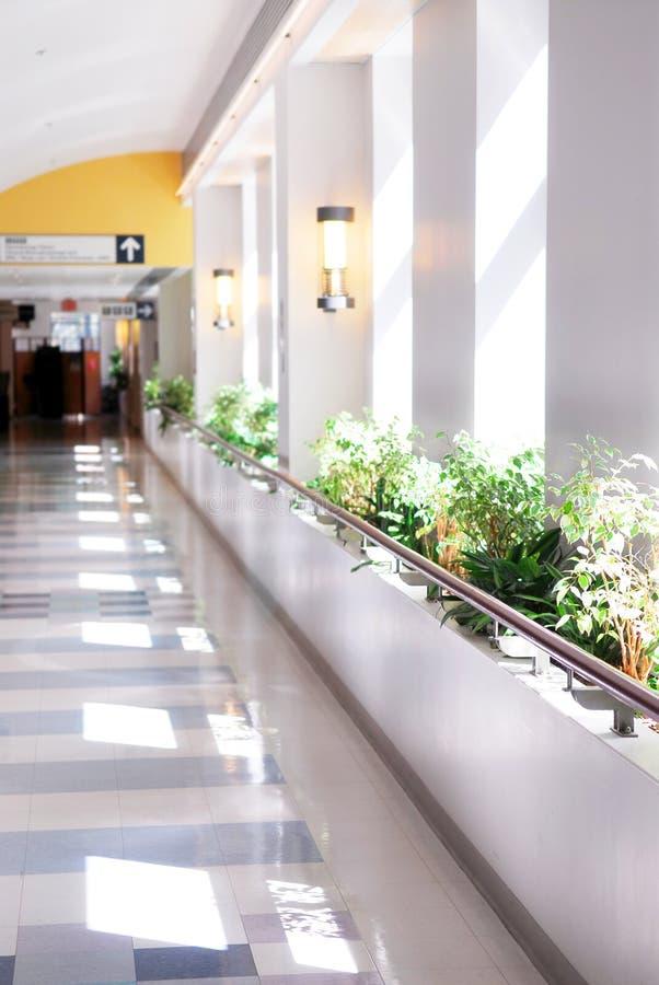 Hospital corridor. Leading to a reception area stock photography
