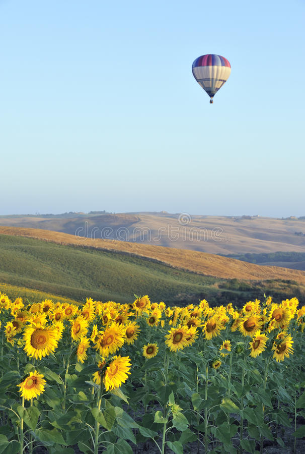 Download Hot-air balloon in Tuscany stock image. Image of italy - 10354475