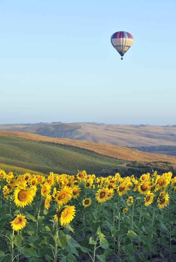 Hot-air balloon in Tuscany royalty free stock photo
