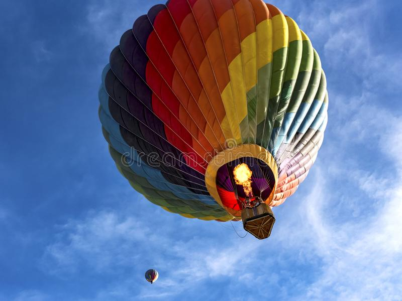 Hot air balloons at the Arizona Balloon Classic royalty free stock photo