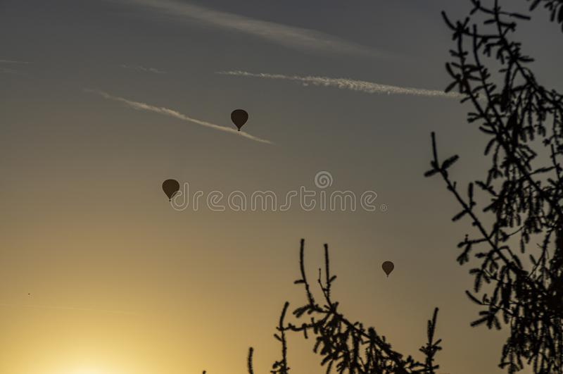 Hot air balloons in the sky at dawn royalty free stock images