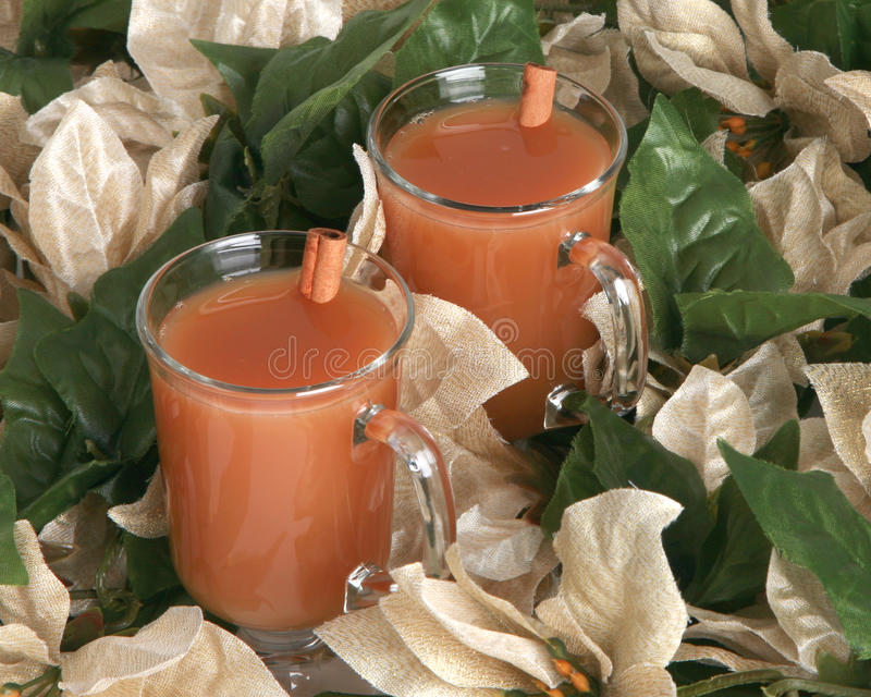 Download Hot Apple Cider With Cinnamon Sticks Stock Photo - Image: 12142448