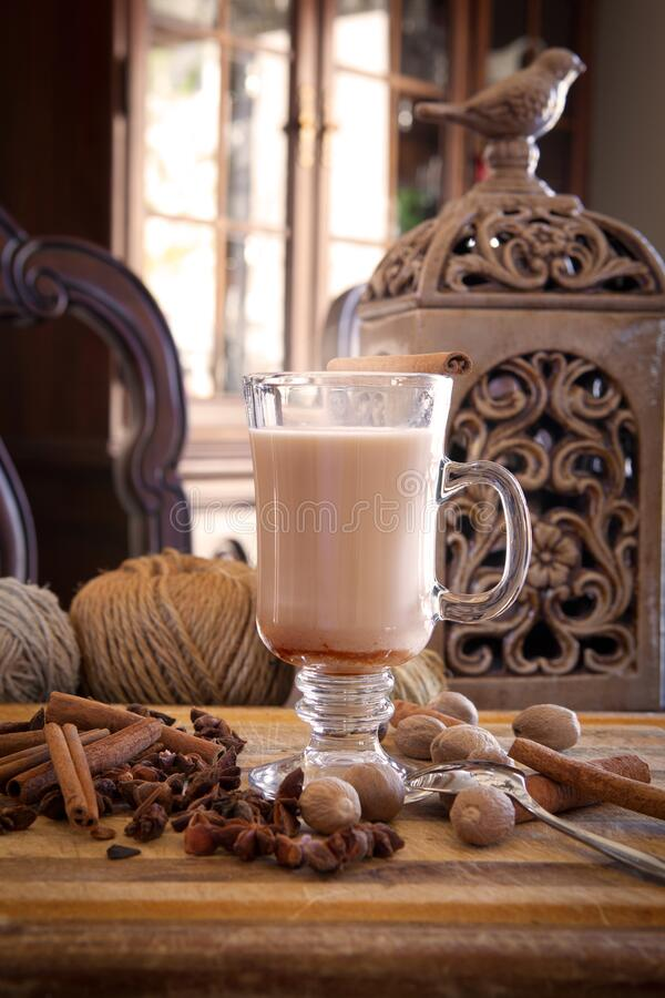 Hot chai with spices stock image