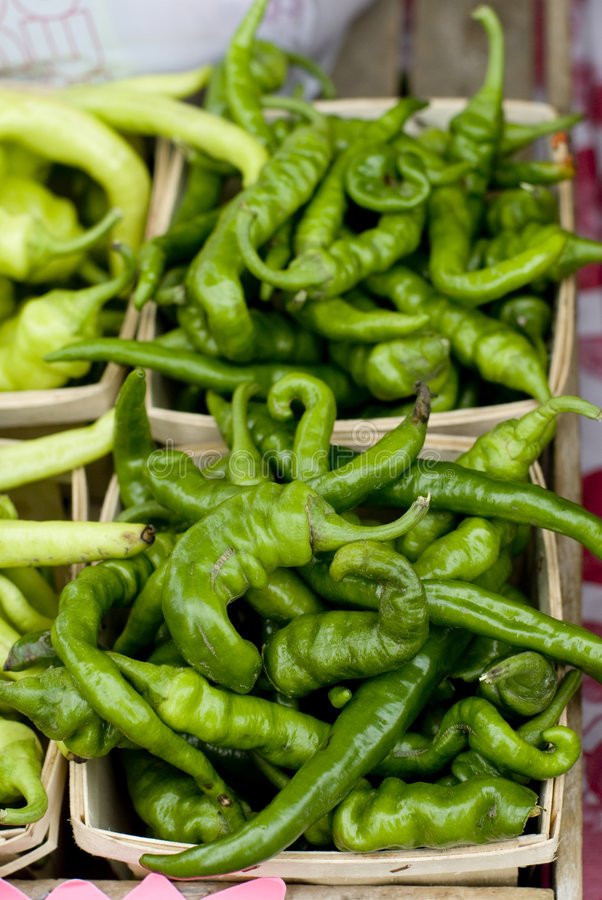 Hot chili stock images