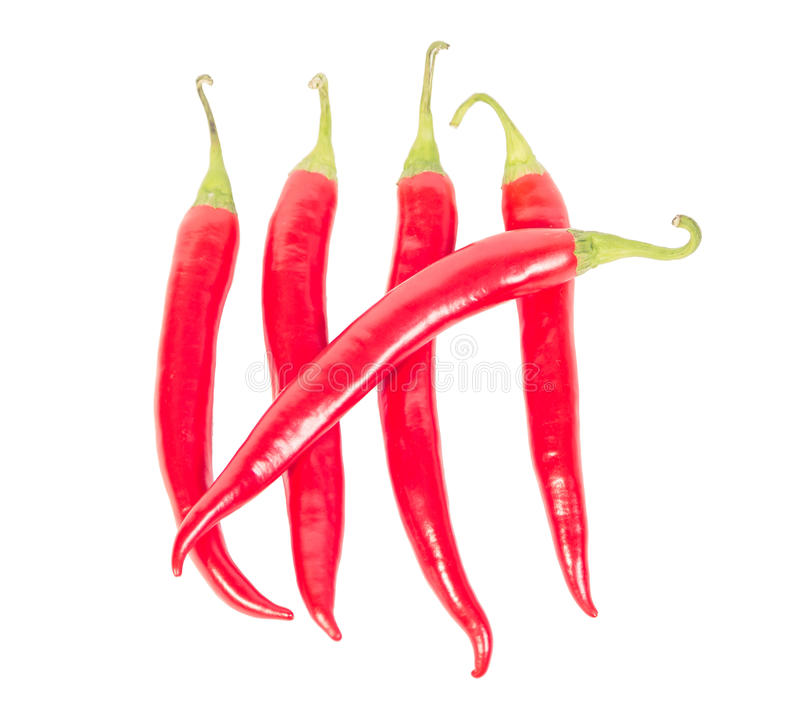 Hot chili peppers, crossed days. A stock photography