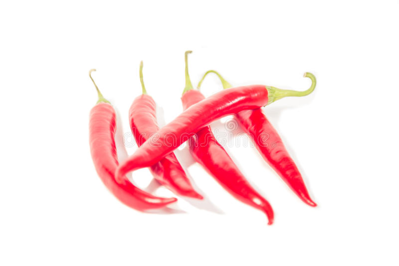 Hot chili peppers, crossed days. A royalty free stock photography