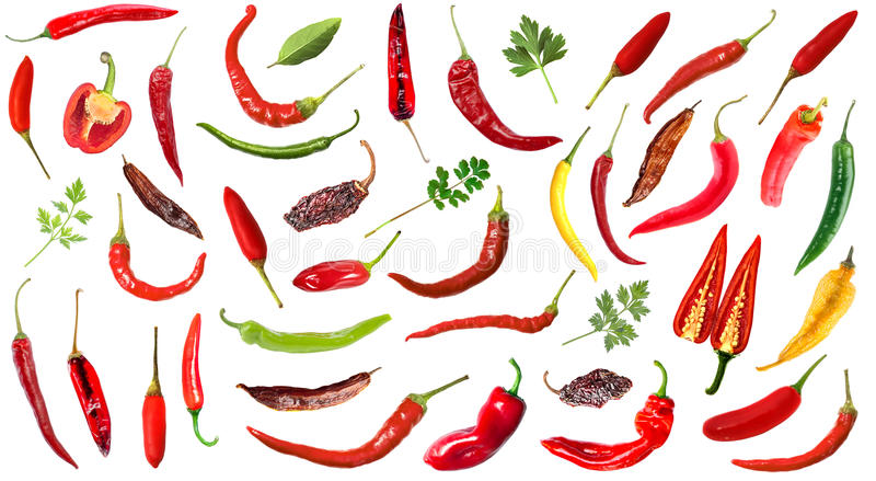 Hot chili peppers on white background stock illustration