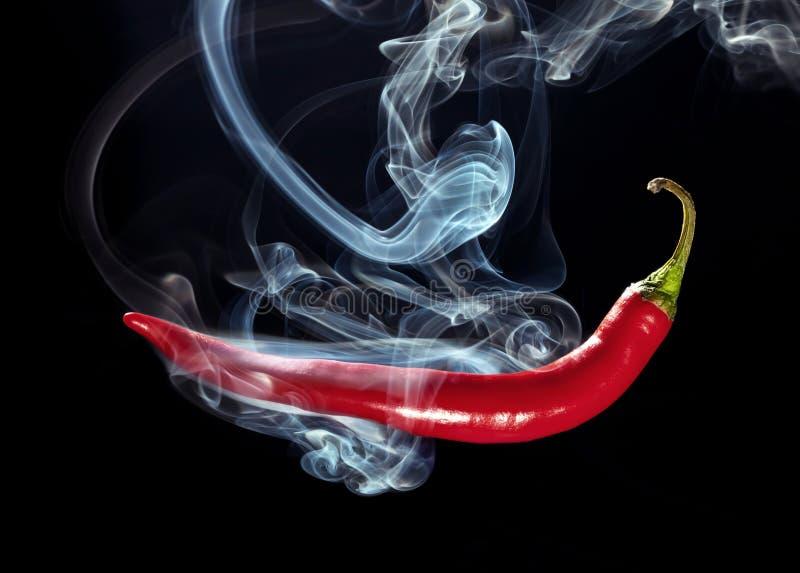 Hot chili stock image