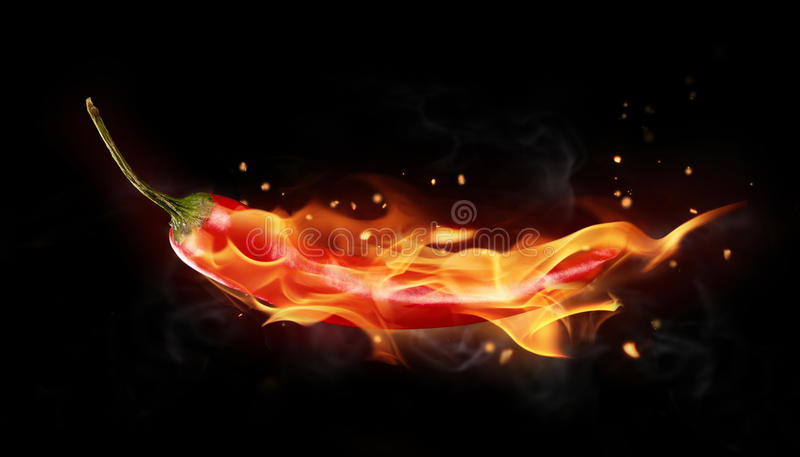 Hot chilli pepper. Burning red chilli pepper isolated on black background stock photo