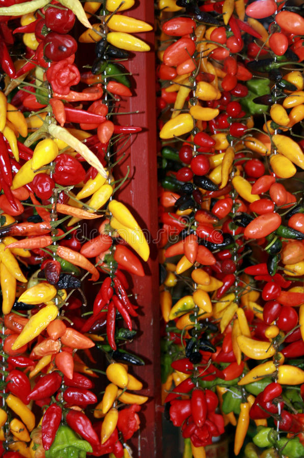 Free Hot Chilli Peppers Stock Images - 15322504