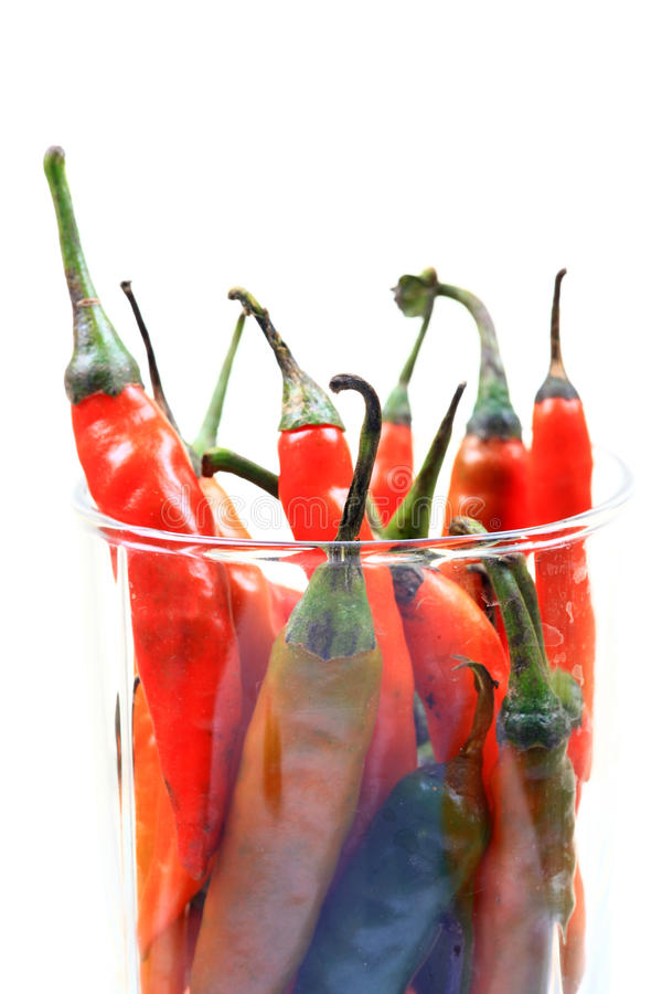 Download Hot chillies stock image. Image of colored, plucked, spice - 17906841