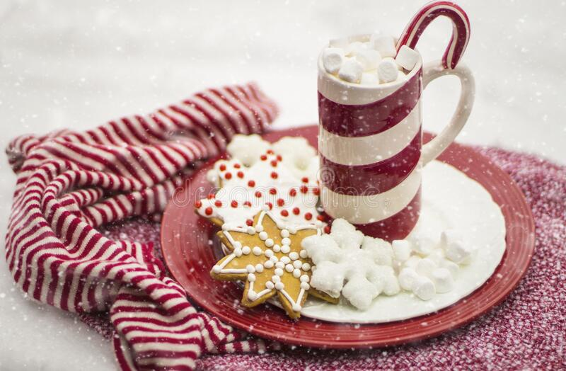 Hot chocolate and gingerbread royalty free stock photography