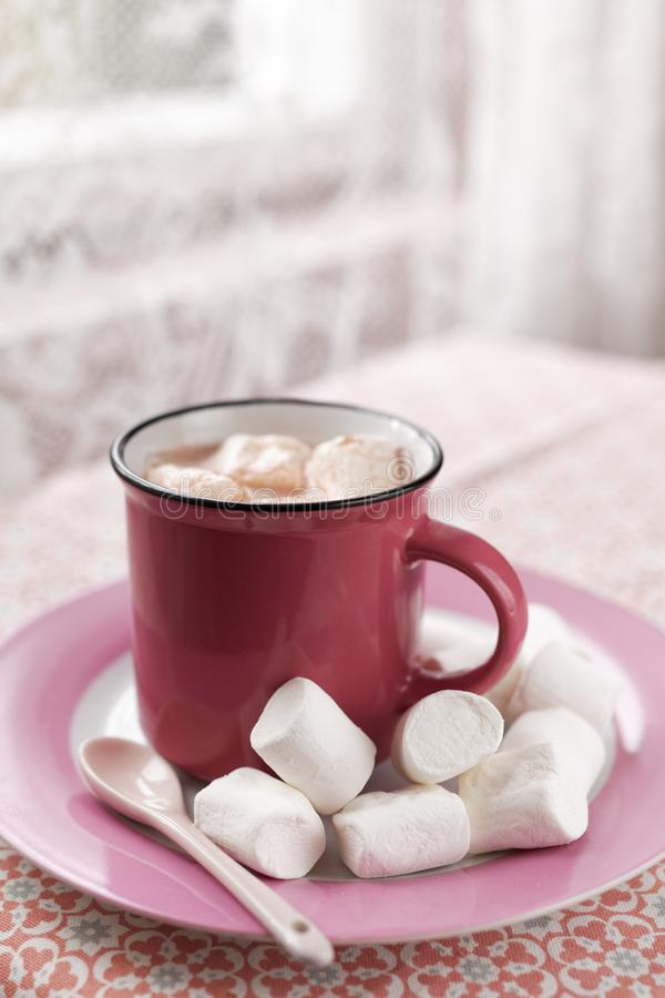 Hot chocolate with marshmallows royalty free stock photos