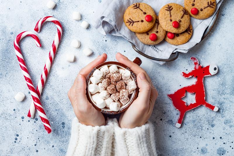 Hot cocoa with marshmallow in in woman hand. Christmas gingerbread, decorated red nosed reindeer cookies. Festive homemade decorated sweets royalty free stock photo