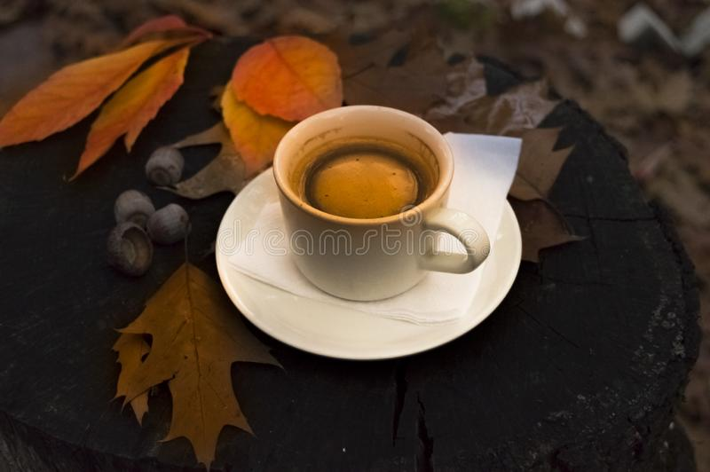 Hot coffee in a cup and fallen leaves on a stump in the forest in autumn stock photos